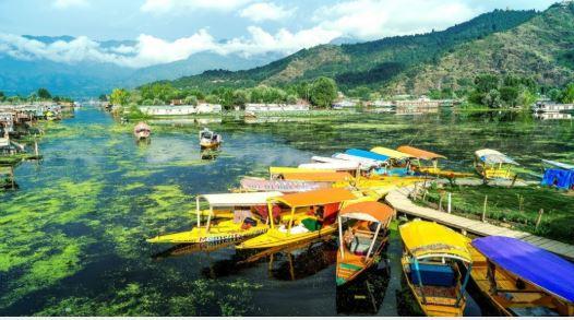 Cosa vedere in Kashmir