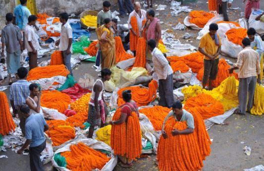 Cosa vedere a Calcutta