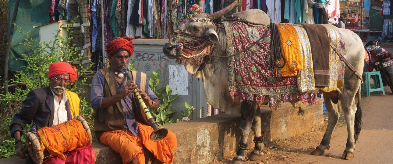 Yoga e meditazione in India